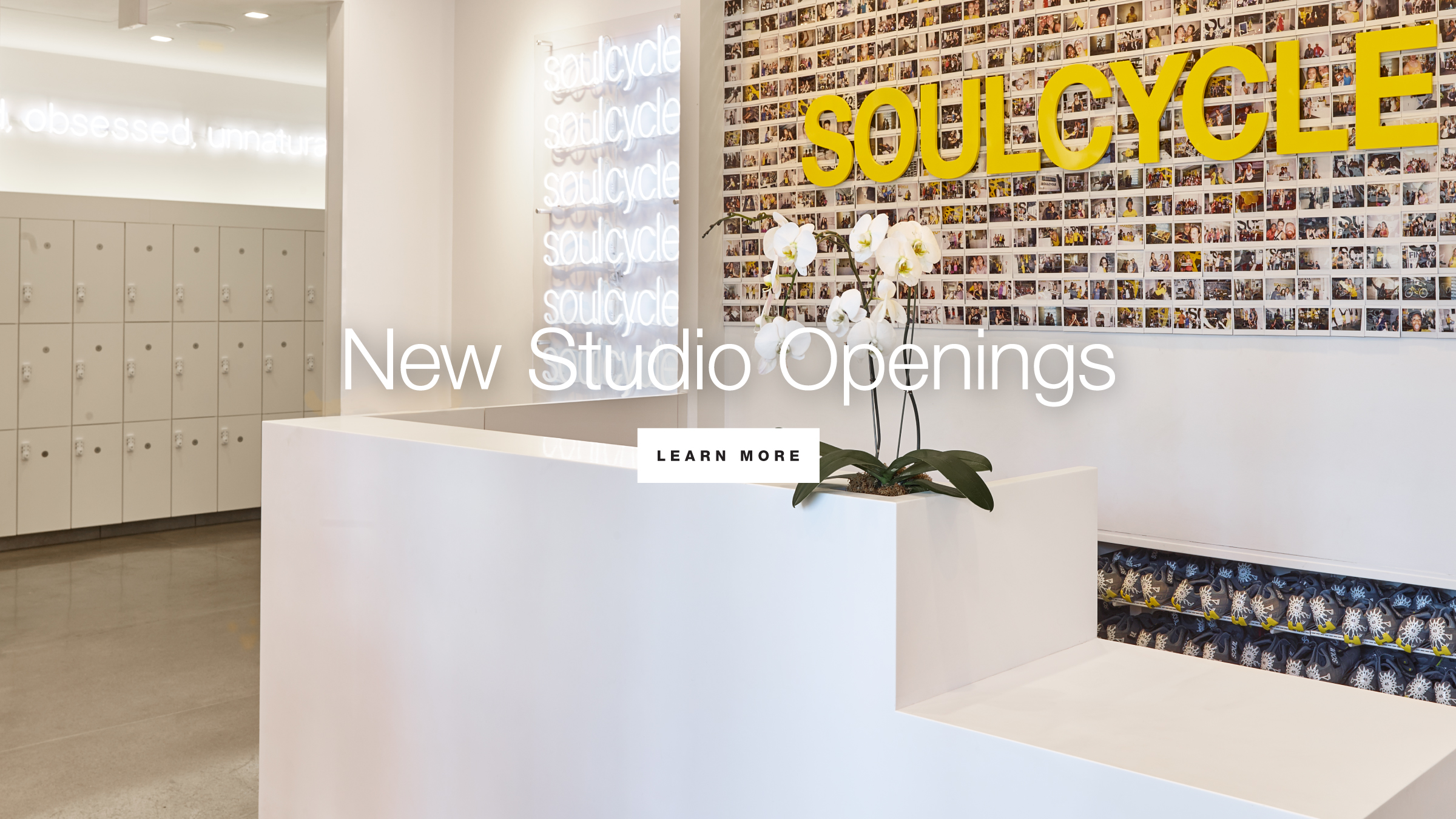 New Studio Openings